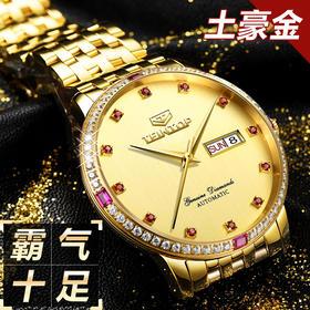 天陀(Teintop)新款土豪金男表 时尚镶钻防水全自动机械手表