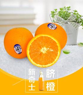 美国新奇士脐橙6枚装 阳光的味道