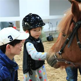 穿上马服、踏上马背、给马清理身体……今天就让我们一起做个优雅有气质的小骑士吧!