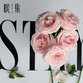 【暖集街角花店】粉玫瑰花束