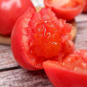 山东烟台西红柿 自然成熟 沙瓤粉果番茄 维C含量高 净重4.5斤装