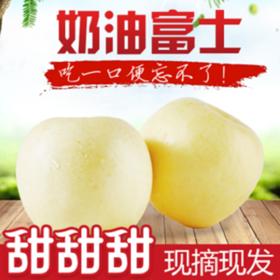 【甜果屋】烟台奶油黄金苹果 脆甜大果5斤装包邮(非黄金帅)