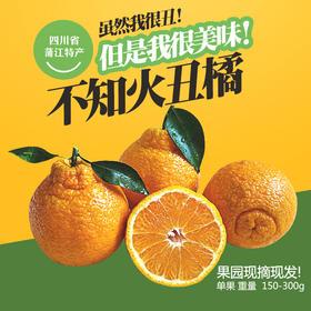 【甜果屋】四川蒲江丑柑丑八怪不知火 很丑很甜 5斤现摘现发包邮 新鲜水果
