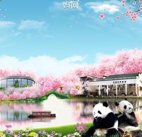 【妈网春游】04/06、07 苏州国家级湿地公园;看熊猫,坐船游览太湖湿地,亲手制作生态浮岛&放归鱼苗