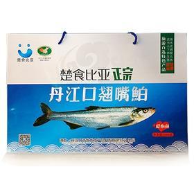 楚食比亚丹江口翘嘴鲌鱼 1000g盒装
