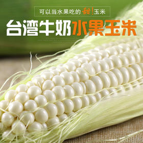 【超甜玉米】台湾水果牛奶玉 豪棒棒超甜水果玉米 米 一款可以生吃的水果玉米 鲜甜美味 全国包邮