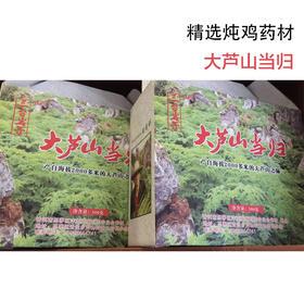 精选炖鸡药材—大芦山当归(100g)