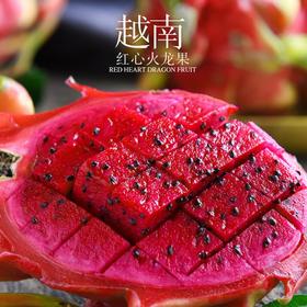 【新鲜特惠】 越南红心火龙果 新鲜嫩滑 超多花青素 直发包邮