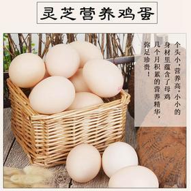 华丽丰鸡蛋农家散养土鸡蛋新鲜灵芝鸡蛋30枚包邮