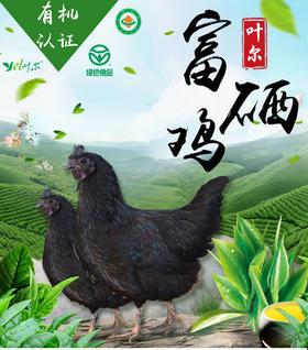 绿色有机双认证 叶尔富硒鸡