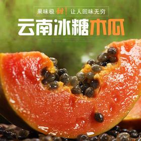 云南冰糖木瓜  现摘冰糖红心甜木瓜青木瓜 树上自然熟新鲜木瓜8斤装