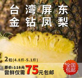 明星水果 | 台湾屏东金钻凤梨 2粒装(4.8斤-5.1斤)