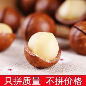 【大颗粒】新货夏威夷果连罐重250g/500g欧洲坚果奶油干果零食炒货包邮