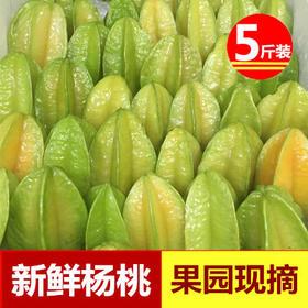 新鲜杨桃水果5斤装新鲜农家水果热带杨桃水果五菱子洋桃