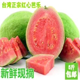 新品现货新鲜水果红心番石榴 好吃农家台湾正宗红心芭乐5斤装包邮