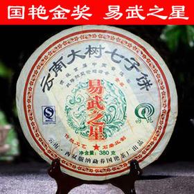 """国艳金奖十年易武大树茶——""""易武之星"""""""