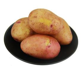 【云南高山红皮黄心小土豆】鸡蛋大小 富含多种微量元素 农家自种/8斤29元/快递直达