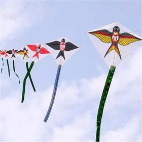 知清明、编柳环、绘风筝……玩妈邀请你一起在博物馆过一个不一样的清明节!