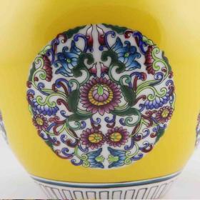 望龙 珐琅彩瓶