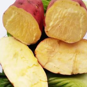 正宗海南桥头地瓜 自有种植基地 cctv热荐 海南必吃特产  板栗味番薯 富硒珍品