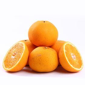 常山胡柚 精选4.5kg 新鲜胡柚 常山特产-835047