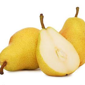 烟台太婆梨 1.9元/斤 精选3斤装 大头梨葫芦梨香软酥甜新鲜水果-835058