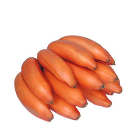 福建漳州红皮香蕉 精选3斤装 红香蕉新鲜香蕉红美人香蕉-835022