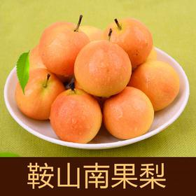 鞍山南果梨 精选3斤装 酒香多汁香水梨 鞍山特产-835057