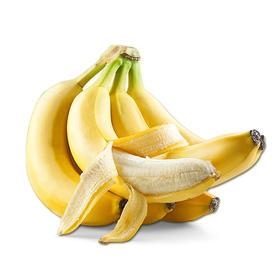 漳州天宝香蕉 精选3斤装 新鲜水果-835019