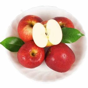 爱妃小苹果 精选3斤装 新西兰引进品种 新鲜水果-835016