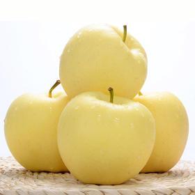密云黄元帅苹果 精选3斤装 黄宝石苹果 新鲜水果-835010