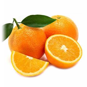 赣南脐橙 精选3斤装 新鲜水果 赣南特产-835064