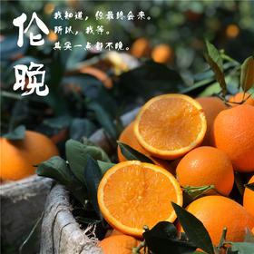 【甜果屋】秭归伦晚脐橙 5斤果园直发 新鲜超甜多汁
