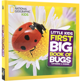 英文原版Little Kids First Big Book of Bugs 昆虫儿童百科普