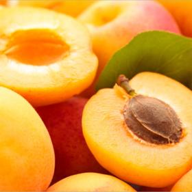 陕西新鲜水果金太阳大黄杏子农家果园