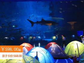 五一出游首选 | 2天1夜罗源湾海洋世界,夜宿白鲸馆+夜探海洋馆+海上搏斗,带上宝贝一起探索海洋的奇妙夜!