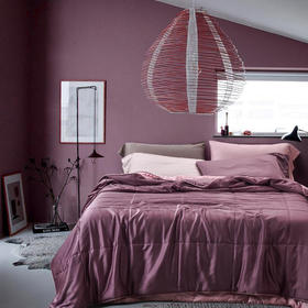 夏季新款60支兰精天丝高端夏被 空调被  温莎紫色