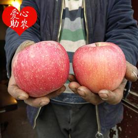 爆仓3天后发货【爱心助农 坏果包赔】 山西临猗天然又好吃的苹果滞销 香甜多汁 天然不打蜡 净重8.5斤