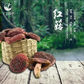 包邮云南特产正宗野生红菇200g