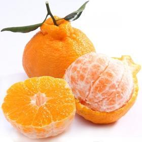 四川不知火丑橘5斤/箱