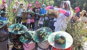 【5月12日】甜蜜母亲节!蜜蜂王国割蜂蜜,做蜜蜂棒棒糖给妈妈!