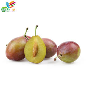 【趣玩生活】进口水果 智利西梅约1000g