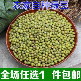 农家自种新鲜小绿豆夏天绿豆汤常备杂粮500g