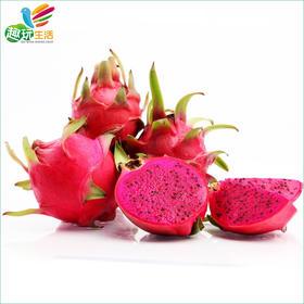 【趣玩生活】进口水果 越南红心/白心火龙果 4斤装