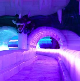 国色天乡五期四季冰雪王国特惠通票,17项冰雪项目,24个游乐项目!