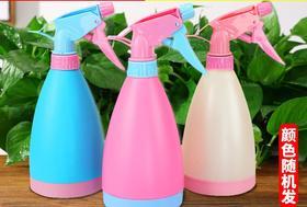 浇花喷壶小喷水壶园艺家用洒水壶气压式喷雾器小型压力浇水喷雾瓶