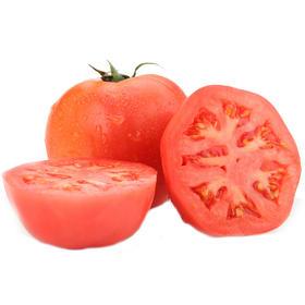 御农优品 云南番茄 新鲜农家自种西红柿 5斤