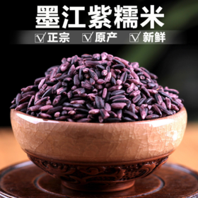 19年新米 墨江紫米云南特产古种紫糯米血糯大米优质老品种紫米