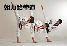 价值660元跆拳道精品课9.9元限量抢!