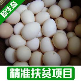 【雅谷山】农家散养土鸡蛋30枚